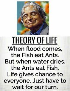Apj quotes - When Flood comes, the fish eats ants but when water dries, ants eat fish Apj Quotes, Real Life Quotes, Life Lesson Quotes, Reality Quotes, Wisdom Quotes, Qoutes, Motivational Quotes, Fish Quotes, Legend Quotes