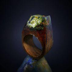 ForestDreamer / Drevený prsteň: Divoká záhrada