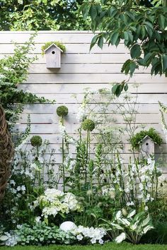 White and green plants, horizontal slat fence, birdhouse