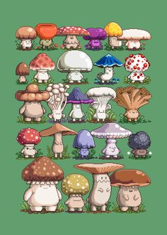 Pixel art mushrooms you say? Check out these fun guys. Boy Character, Character Concept, Concept Art, Arte 8 Bits, Illustration Inspiration, Art Mignon, Mushroom Art, Mushroom Drawing, Poses References