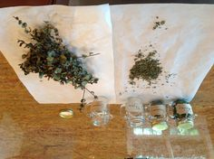 Dry your fresh herbs in an oven on 200 degrees for 20 or 30 minutes in parchment paper. Then shut off oven. Let sit  in there for a few moe minutes.  Crumble in parchment paper and store.  I didn't do my basil because I use it up pretty fast.  Any herb will do even lavender.