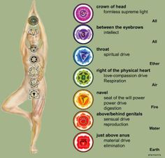 Your Seven Chakras (in a nutshell)