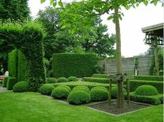 Landscapes, garden design, gardening practice, landscape architecture, green related things. Modern Landscaping, Landscaping Plants, Garden Landscape Design, Landscape Architecture, Boxwood Garden, Planting Shrubs, Decks And Porches, Garden Spaces, Hedges