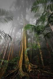 Queensland, Australia