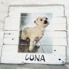 Deco-bord: Hond Nora/ Luna / Kyra | Karin's Deco Atelier