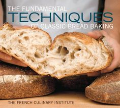 The Fundamental Techniques of Classic Bread Baking by French Culinary Institute http://www.amazon.com/dp/158479934X/ref=cm_sw_r_pi_dp_-k9Hvb1EG3PYD