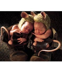 Top Baby pictures by Anne Geddes art