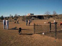 Best Dog Parks In Denver - http://pets-ok.com/best-dog-parks-in-denver-dogs-906.html