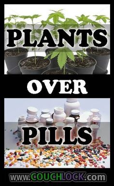 plant over pill ( marijuana / cannabis )