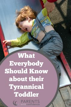 What You Should Know When Parenting Your Toddler Find out the underlying developmental and brain-based causes of mystifying and maddening toddler behaviors, as well as how to deal with them effectively. Parenting Toddlers, Parenting Advice, Pregnancy First Trimester, Difficult Children, Toddler Behavior, Terrible Twos, Mindfulness For Kids, Kids Mental Health, Positive Discipline