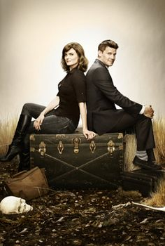 Okay, so it's a formulaic procedural. I still love the will they/won't they between Booth and Bones.  Can't wait to see what this next season and the baby have in store for us!