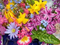 i cant wait for spring!!! i just wanna see the pretty flowers!!!!