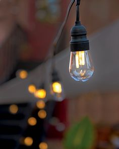 Edison Bulb LED String Lights. Get the look of retro bulbs with these energy-efficient LEDs. Clear plastic and cool-to-the-touch.  Plug-in light string is 21' long overall, with 10 clear, UV-protected plastic bulbs. Frostproof; may be displayed outdoors year-round.