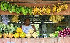 frutero dominicano¡¡¡