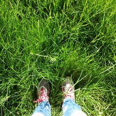 Marloes van Zoelen - #synchroonkijken #synchroneyes Dag 7. #fromwhereistand  Tijdens stiltewandeling.