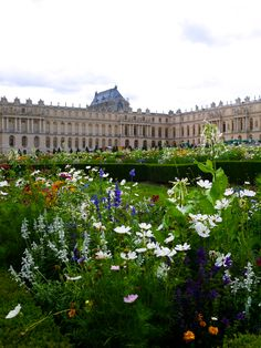 The Londoner: Summer in Versailles Visit Versailles, Chateau Versailles, Versailles Garden, Vacation Wishes, Vacation Spots, Paris Travel, France Travel, Great Places, Places To See