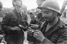 Búscame en el ciclo de la vida: Recuerdos de la Guerra Civil Española III