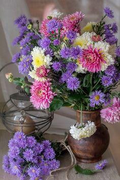 Amazing Flowers, Love Flowers, My Flower, Beautiful Roses, Purple Flowers, Flower Images, Flower Pictures, Beautiful Flower Arrangements, Floral Arrangements