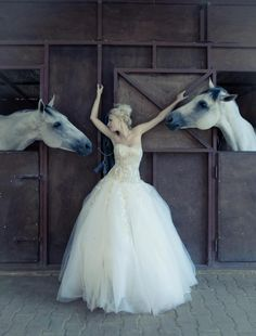 photoshooting with horses! Portrait in bridal gown in stables with two gorgeous white horses. Long fluffy white wedding dress.