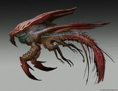 Crustacean Dragon