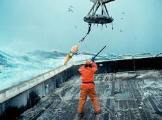 Corey Arnold – Fish Working Bering Sea (10 Photos)