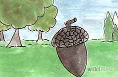 Grow an Oak Tree from an Acorn - wikiHow