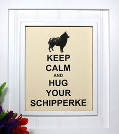 Schipperke Keep Calm Poster - 8 x 10 Art Print - Keep Calm and Hug Your Schipperke - Shown in French Vanilla - Buy 2 Posters, Get a 3rd Free on Etsy, $8.95