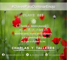 #Enojo #Ira #DominarEnojo #Dominio #Autodominio #SaludEmocional  #CentroSaludEmocional #Clave #003