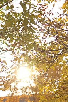 This time of year, my favourite place is outside under the beautiful autumn trees, enjoying a perfect sunset :) What Inspires You, Love Stars, Photography Projects, Autumn Trees, Great Places, Kate Spade, Friday, Clouds, Spaces