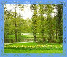 Unbetitelt Golf Courses, Plants, Plant, Planets