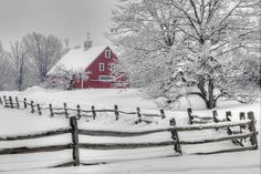this picture makes me want to put on my snowboots and go for a walk in it :)