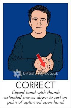 ' British Sign Language Dictionary, English Sign Language, Sign Language For Kids, Sign Language Phrases, Sign Language Alphabet, Learn Sign Language, American Sign Language, Makaton Signs British, Learn Bsl