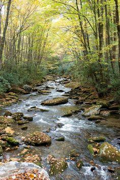 stream Pastel Landscape, Watercolor Landscape, Landscape Art, Landscape Paintings, Beautiful Nature Pictures, Amazing Nature, Beautiful Landscapes, Scenery Pictures, Country Scenes