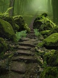rocky path with large ,moss rocks