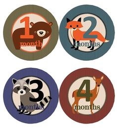 Baby Monthly Milestone Growth Stickers Woodland Animals Bear