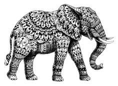 Ornate Elephant 3.0 Art Print by BIOWORKZ   Society6