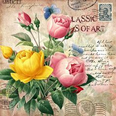 Pink and Yellow roses on postcard with writing