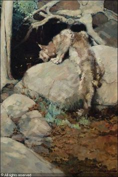 The She Wolf and Lynx, by Frank Schoonover, 1906