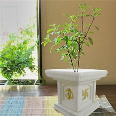 Tulsi Pot Design Google Search Tulsi Kyaro Puja Room