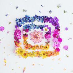 new instagram logo artistic interpretations