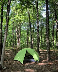 I slept in a green tent in a green forest in the green state of Tennessee.
