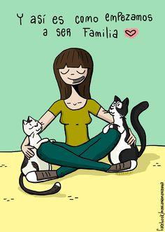 https://www.facebook.com/marianamarrana  #marianamarrana #cat #cats #gatos #illustration #ilustracion # amistad #amor #familia