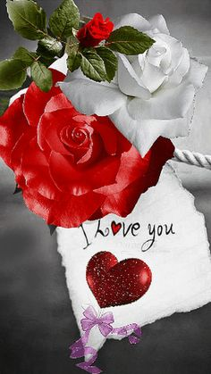 i love you Beautiful Love Pictures, I Love You Images, Love You Gif, Romantic Pictures, Beautiful Gif, Beautiful Roses, Night Love, Morning Love, Hearts And Roses