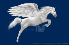 PEGASUS by me Do not redistribute as your own.
