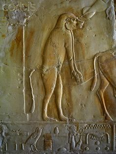 Relief of a monkey walking upright from the Tomb of Kheruef