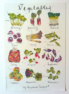 Vegetables in Season Art Print from Original Ink and Watercolour Illustration