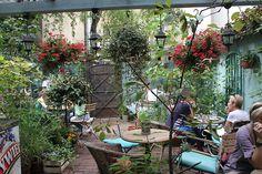 Zielona Weranda Cafe   Restaurant in Poznan, Poland