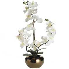 """An orchid is one of nature's most graceful and mysterious flowers. The mystery? How to keep one alive. Smart cookies like you go for the artificial-but-lifelike kind that come in their own copper-colored pots. Mystery solved. <br></br> <li>Size: 7""""W x 7""""D x 22""""H</li> <br></br> Featured in <a href=""""http://www.pier1.com/TopMenu/GetInspired/LivingbyDesignModern/tabid/822/Default.aspx"""">Living by Design</a>."""