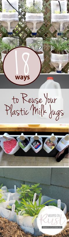 How to Reuse Plastic Milk Jugs - Wall planters, Halloween ghosts, etc