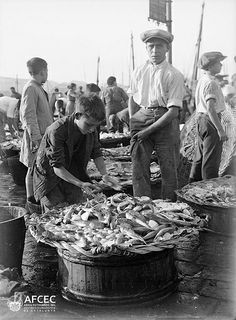 Niños seleccionan Pescado para ser vendido en el Muelle. Barcelona-Cataluña (España). 2 Abril 1931.